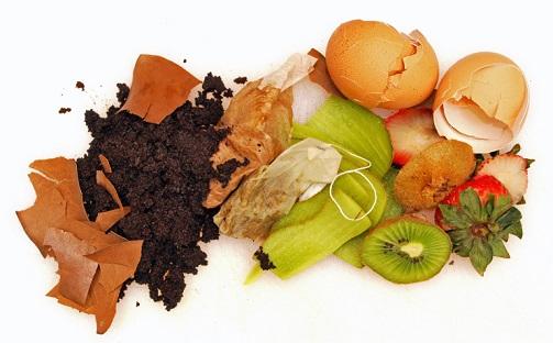 Gli alimenti, avanzi e scarti richiedono un singolo cestino