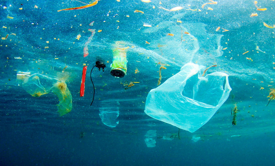 L' Europa dice addio alla plastica monouso