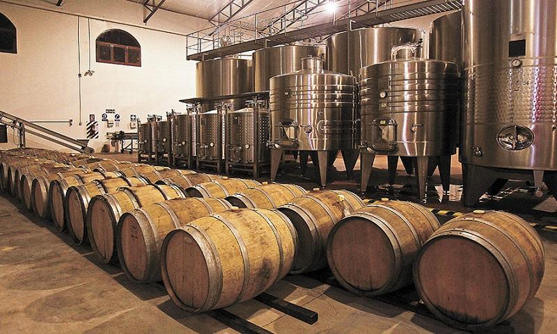 sanificazione azienda vinicola cantine